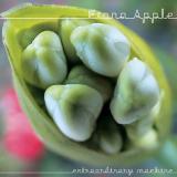 FionaApple-03ExtraordinaryMachine