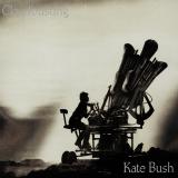 KateBush-Sing14Cloudbusting