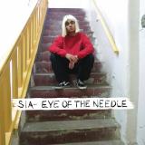 Sia-Sing21EyeOfTheNeedle