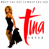 TinaTurner-Sing11WhatYouGetIsWhatYouSee